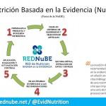 Fases de la Nutrición Basada en la Evidencia (NuBE)
